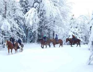 Horseback riding in winter in Vermont