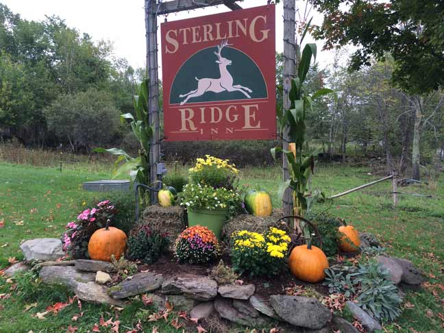 Sterling Ridge Ranch Sign with Pumpkins