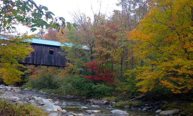 Read more about the article Six Vermont Foliage Ideas