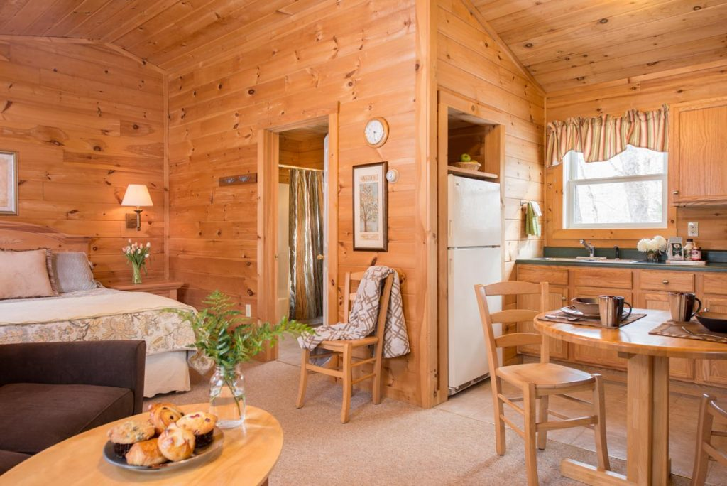 Interior of studio log cabin with open living space