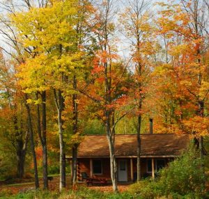 fall foliage cabin in vermont